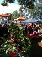 The colourful and shady Bangalow markets - only 5 minutes away