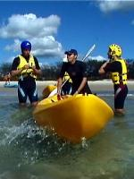Kayaking with the dolphins is an adventure not to be missed
